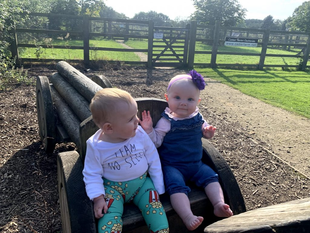 Two cute babies sat on a wooden tractor at a farm